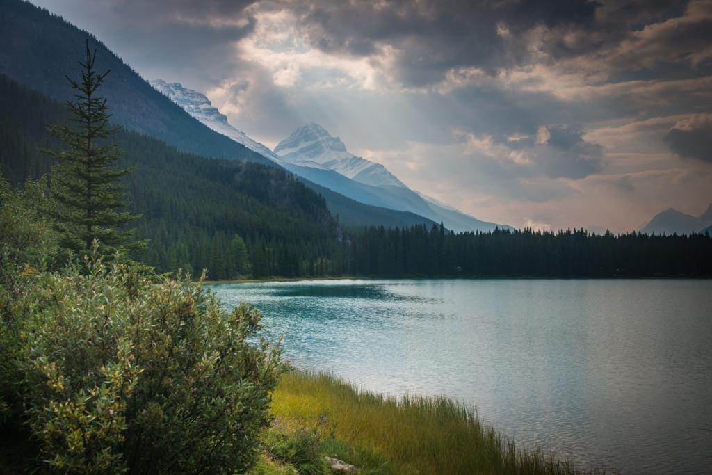 banff_jasper_icefields_parkway_alberta_canada_1787-2