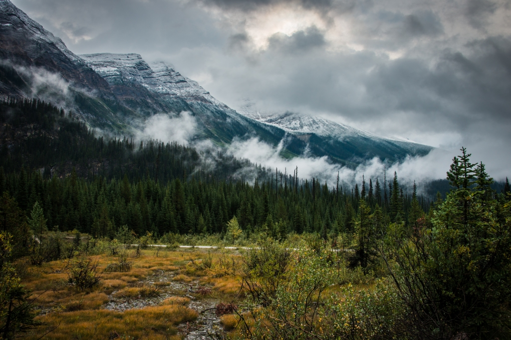 yoho_national_park_fog_mountains_04