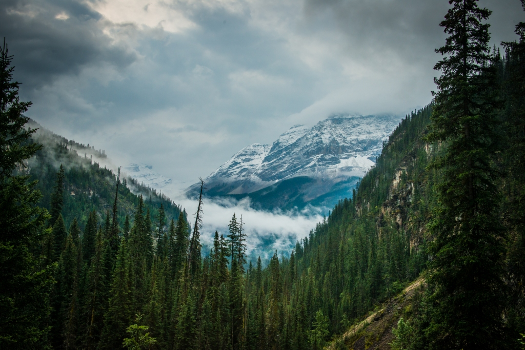 yoho_national_park_fog_mountains_05