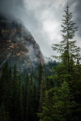 yoho_national_park_fog_mountains_06