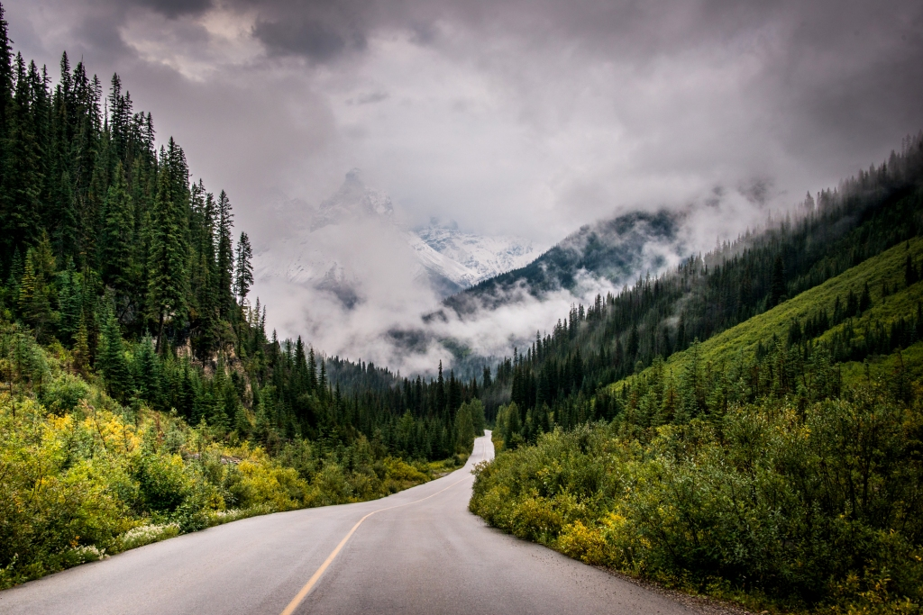 yoho_national_park_fog_mountains_road_02