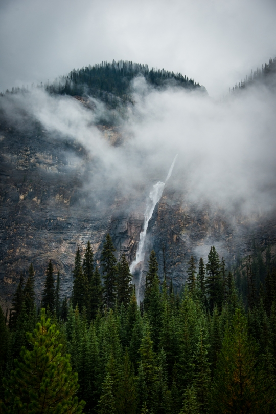 yoho_national_park_fog_mountains_waterfall