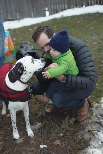 apple-cider-making-new-england-baby-dalmation
