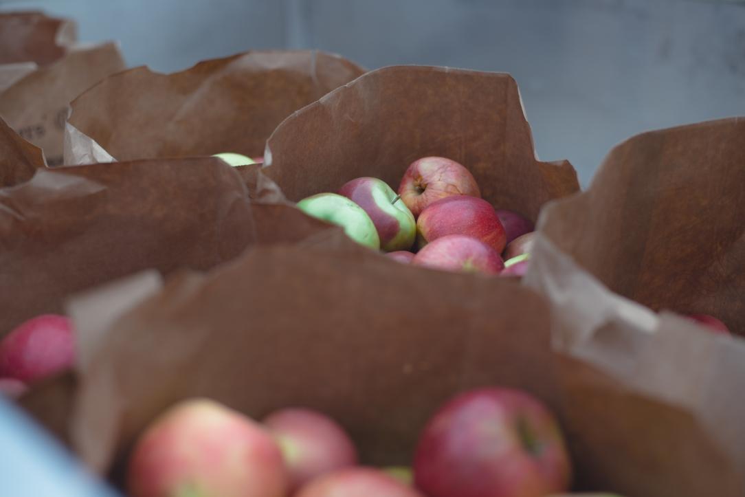 make-apple-cider-new-england-08
