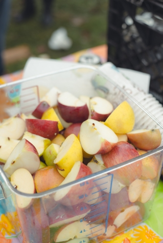 make-apple-cider-new-england-14