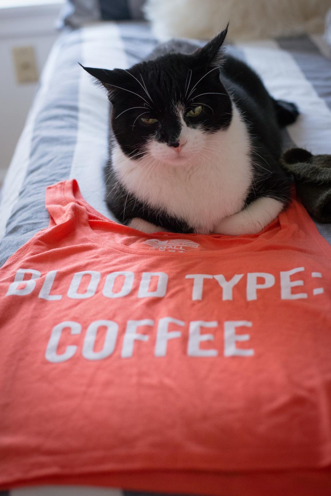 alpha-brew-coffee-jamie-bannon-photography_7288