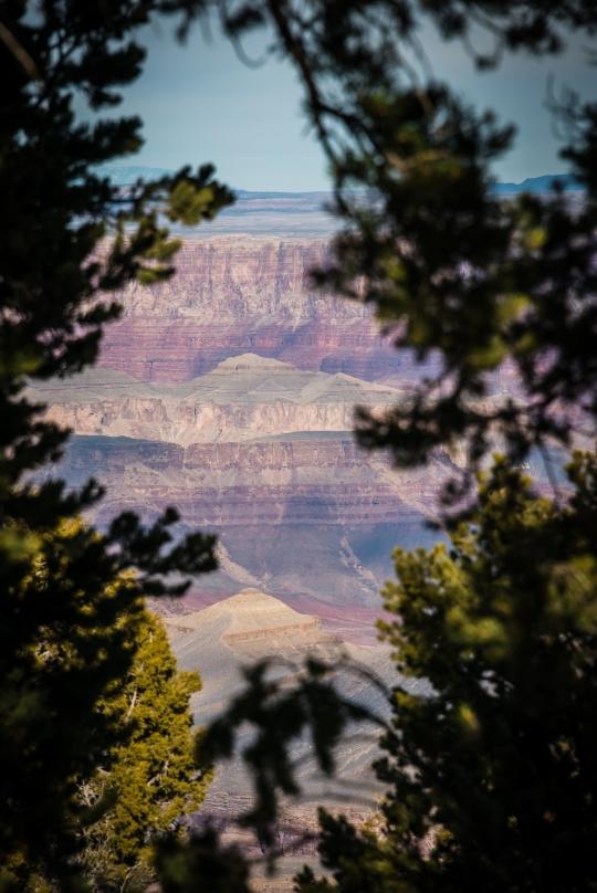 grand-canyon-south-rim-winter-jamie-bannon-photography_8548